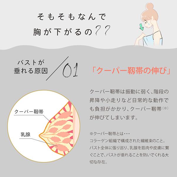 胸が垂れる原因はクーパー靭帯の伸び