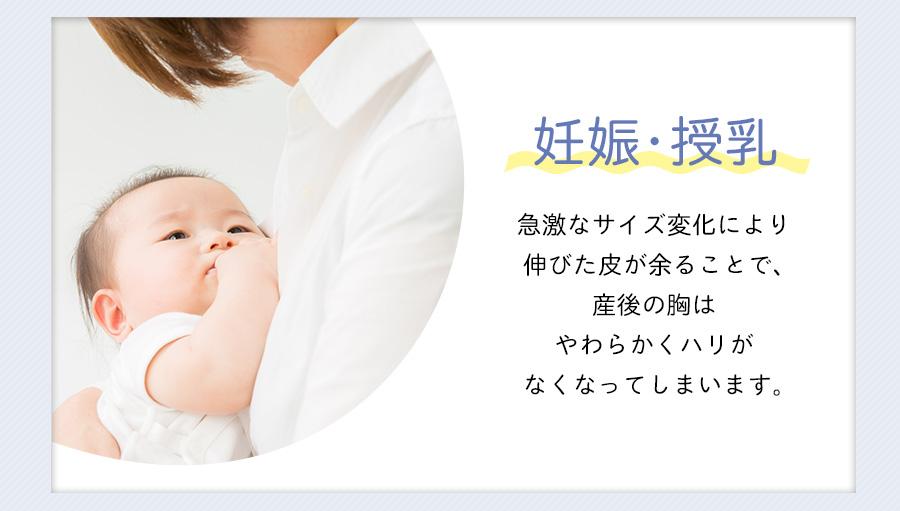 妊娠・授乳→急激なサイズ変化により、伸びた皮が余ることで、産後の胸は柔らかくハリがなくなってしまいます。
