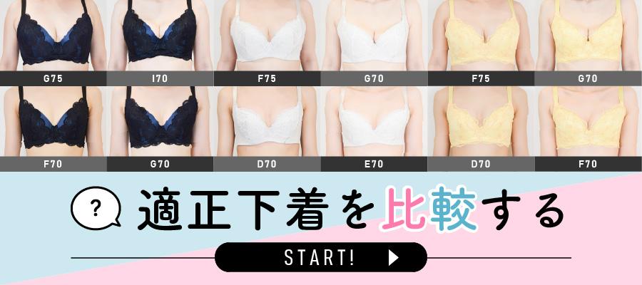 あなたが気になる適正下着を商品ごとに比較ができます