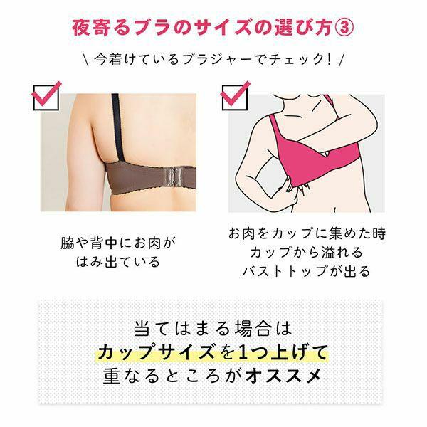 パープル・紫